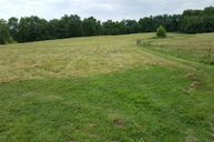 21.28 Ac Oak Grove Road Monroe TN, 38573