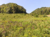 72.68 Ac South Fork Road Whitleyville TN, 38588
