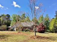 135 Wagon Wheel Drive Ellerslie GA, 31807