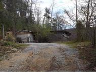 7337 Hwy 19e Roan Mountain TN, 37687
