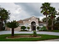 19313 Wind Dancer Street Lutz FL, 33558