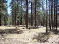 2b Coconino Forest Rd. 137a Happy Jack AZ, 86024