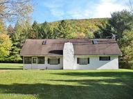 3916 Windy Valley Rd Mehoopany PA, 18629