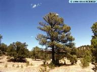 3 W Forest Rd. 66 Datil NM, 87821