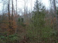 Private Forest Drive Dunmore WV, 24934