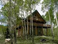 380 County  26 Road Twin Lakes CO, 81251