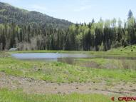 212 Camp Robber Creede CO, 81130