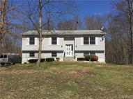 21 Painted Apron Terrace Port Jervis NY, 12771