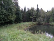 40 Acres County Road M Shawano WI, 54166