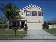 3856 Spirited Circle Saint Cloud FL, 34772