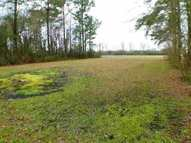 255 E Pleasant Hill Road Lot #1 Pink Hill NC, 28572