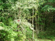Lot 10 Pine Grove Estates Lerona WV, 25971