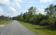 Cr-229/150th Trail Raiford FL, 32026