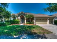19109 Autumn Woods Avenue Tampa FL, 33647