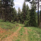 Lot 19 Little Salmon Road New Meadows ID, 83654