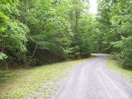 Lot 18 Laurel Hollow Rd Amherst VA, 24521