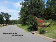 Lot 30 Commerce Drive Corner Of Commerce Drive & Chestnut Dri Mountain Home AR, 72653