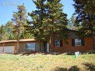 230 Piney Point Lane Woodland Park CO, 80863