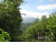 Lot 14  Junebug Trail Traphill NC, 28685