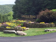 601 Ridge Run Linville NC, 28646