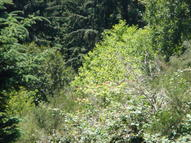 Lot 106 N Bayview Waldport OR, 97394