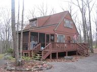 326 Forest Dr Lords Valley PA, 18428