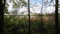 7203 Buck Lake Woods Drive Se Alto MI, 49302