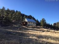 113 Aspen Vale Circle Florissant CO, 80816