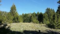 Lot 39a Beaverslide Road Helmville MT, 59635