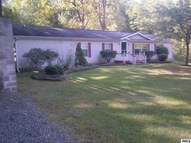 217 North Dr Brooklyn MI, 49230