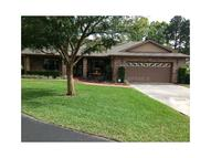113 Greentree Lane Yalaha FL, 34797