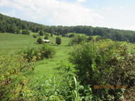 Tbd Pinhook Rd Lot 6 Rogersville TN, 37857