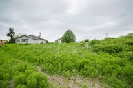 8826 Thomle Rd Stanwood WA, 98292