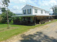 747 Peaser Road Leivasy WV, 26676