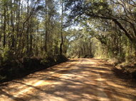 0000 Radford Road (3.96 Acres) Quitman GA, 31643