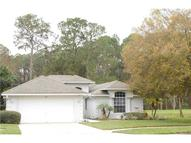 612 Juniper Way Tavares FL, 32778