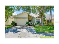 11652 Hidden Hollow Circle Tampa FL, 33635