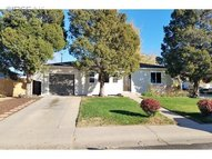 536 26th Ave Ct Greeley CO, 80634