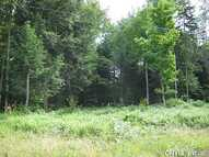 00 Lewis Rd Boonville NY, 13309