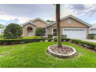 17940 Holly Brook Drive Tampa FL, 33647