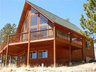 305 Private Drive Lake George CO, 80827