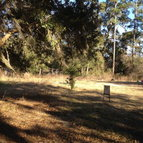 Lot 14 Oneal Drive Townsend GA, 31331