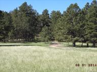 11430 County Road 110 Kiowa CO, 80117