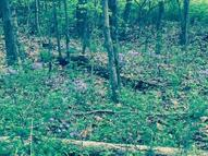 0 Abney Rd Indian Mound TN, 37079