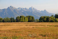Lot 2 E Zenith Road Jackson WY, 83001