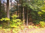 1 Acre East Stoner Lake Rd Very End Of Road To Private Road Caroga Lake NY, 12032