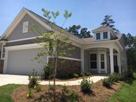 514 Pale Beauty Court Griffin GA, 30223