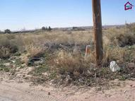 Lot 85  Shrode Road Anthony NM, 88021