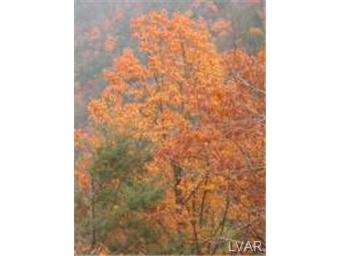Lot 205 Bromley Road Henryville PA, 18332