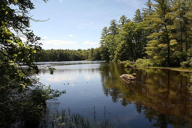 (3.4) Swamp Pond Road Narrowsburg NY, 12764